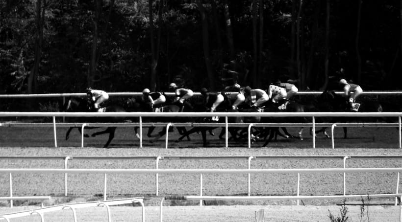 Horseraces 8