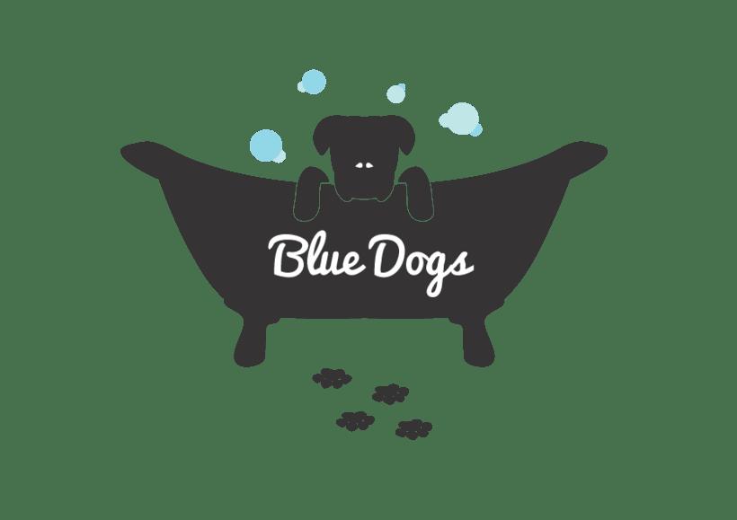 Lavadero de Perros -1