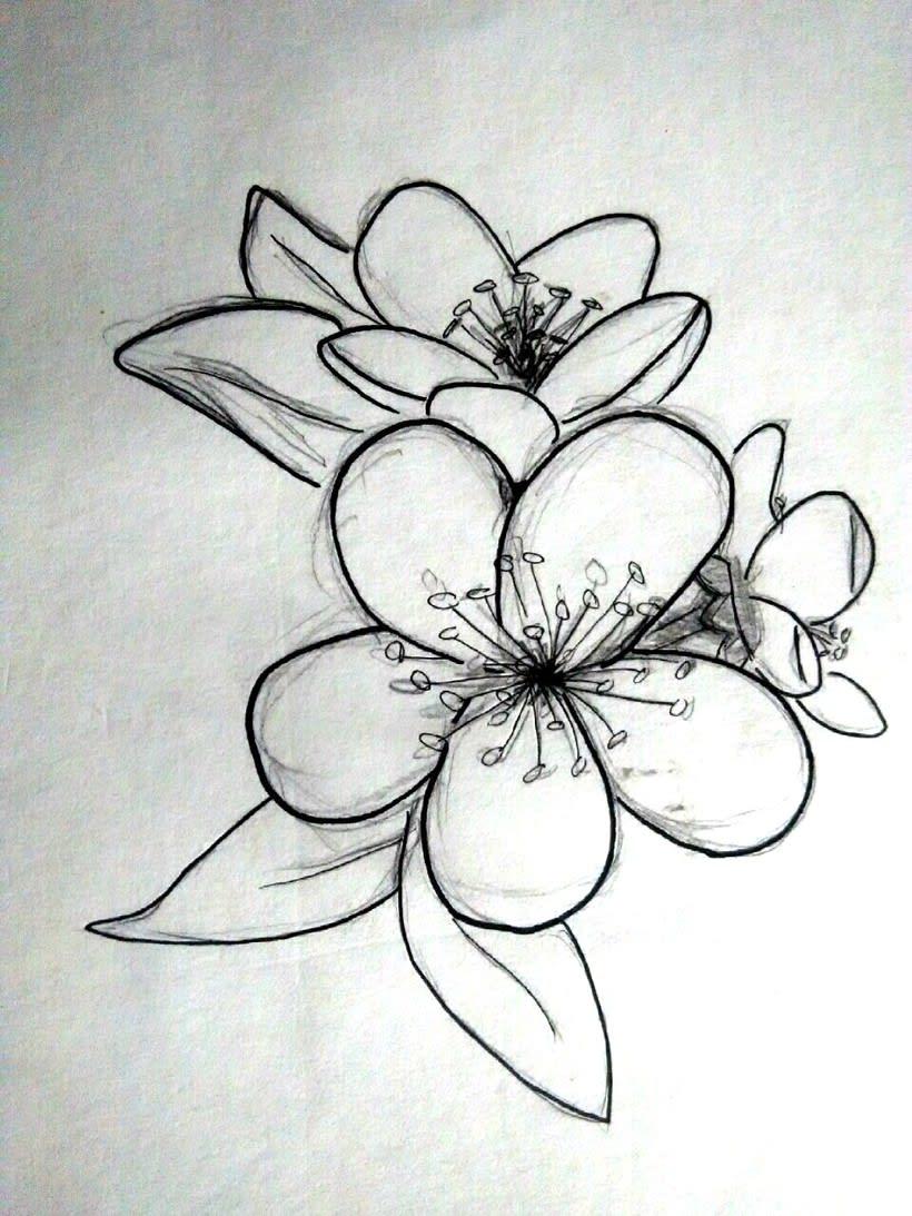 ilustración silueta -1