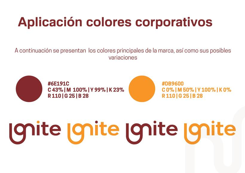 Manual Corporativo (Diseño de identidad corporativa) 3