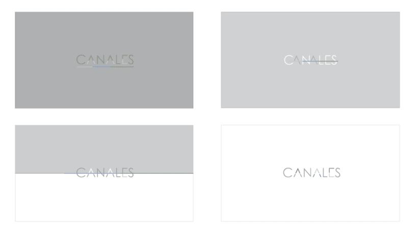 Branding y Diseño Web_Canales Auty 1