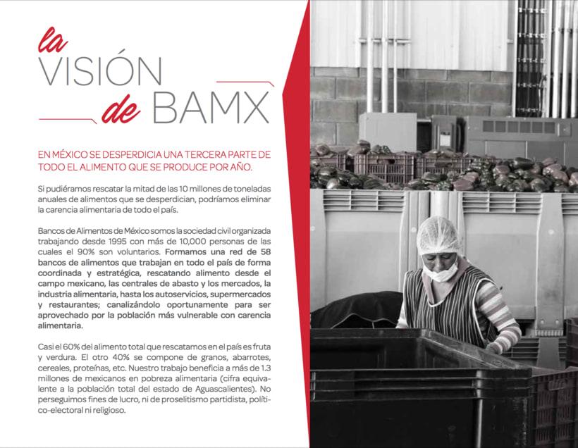 INFORME ANUAL BANCO DE ALIMENTOS DE MEXICO 2015 5