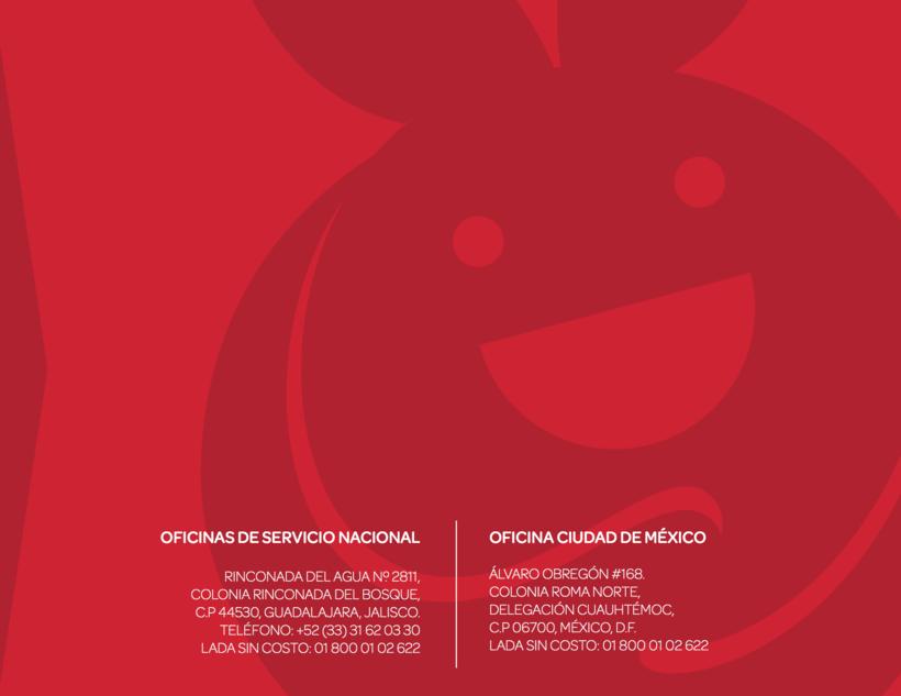 INFORME ANUAL BANCO DE ALIMENTOS DE MEXICO 2015 17