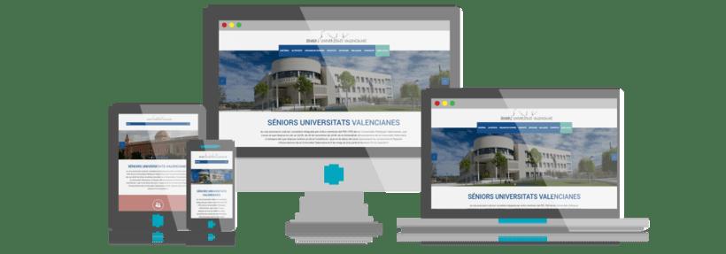 Desarrollo y Diseño Web Senior Universitats Valencianes 0