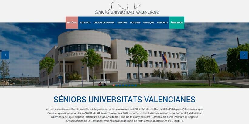 Desarrollo y Diseño Web Senior Universitats Valencianes 1