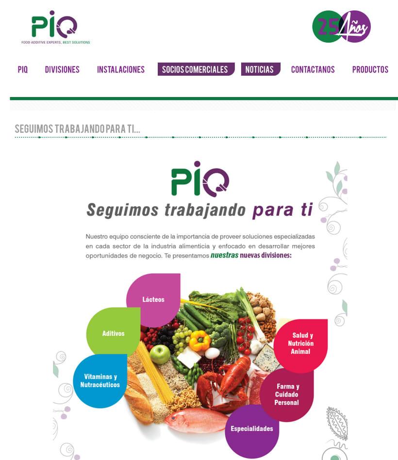 PIQ 3