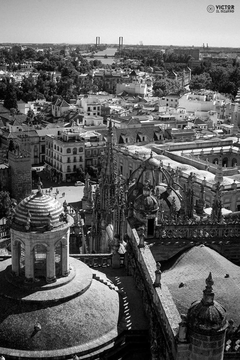 Fotografías de Córdoba y Sevilla (España) 11