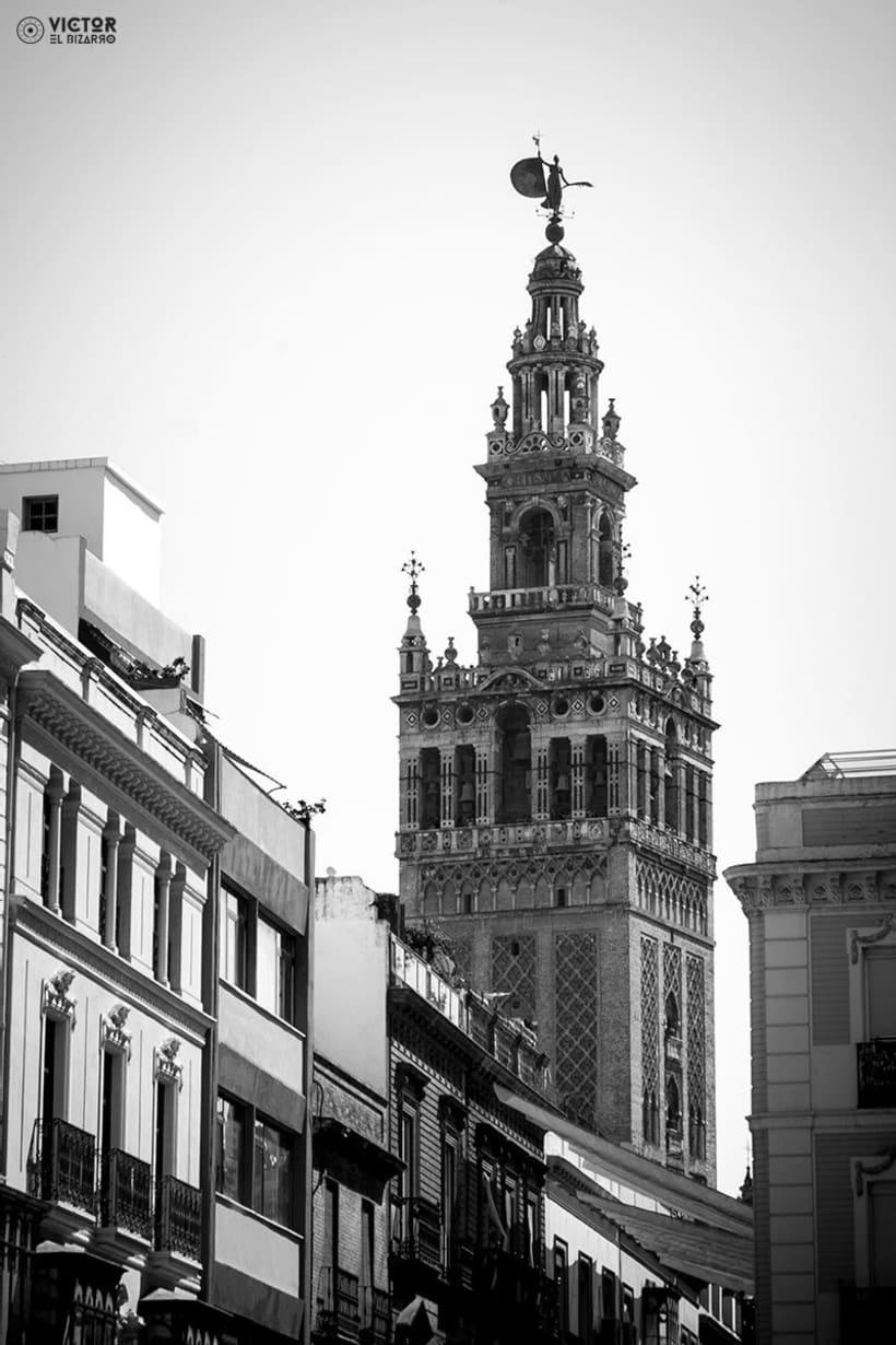 Fotografías de Córdoba y Sevilla (España) 10