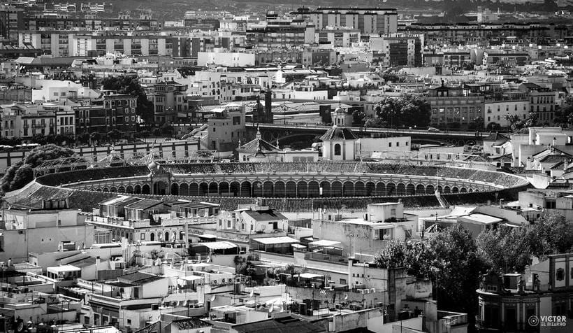 Fotografías de Córdoba y Sevilla (España) 15