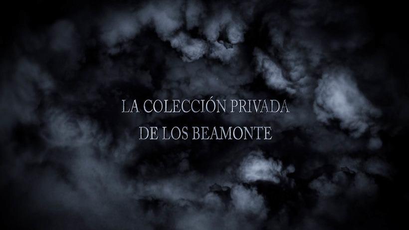 """Diseño de Vídeo- After Effects - Premiere - Photoshop - """"Beamonte"""" Internet Promo 2"""