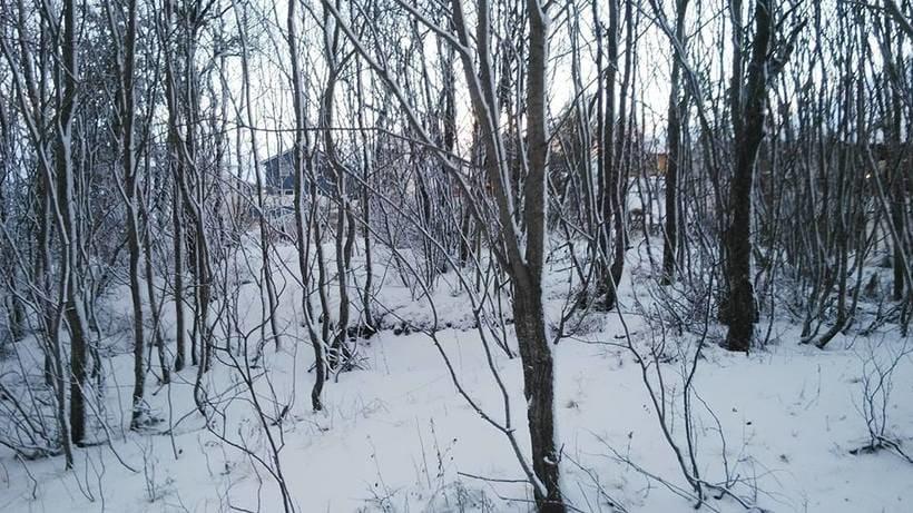 Norge I - En snørik verden | Bodø 3