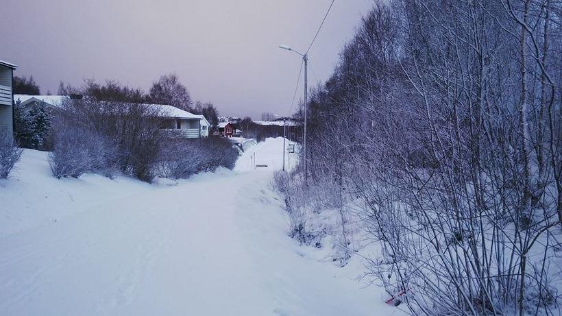 Norge I - En snørik verden | Bodø 5