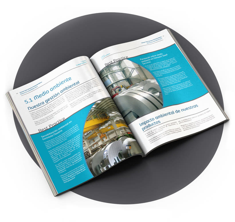 Memoria de sostenibilidad Gonvarri Steel Services PI 2013 9