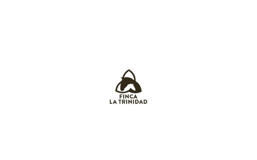 Finca la Trinidad. Diseño e imagen corporativa. 15