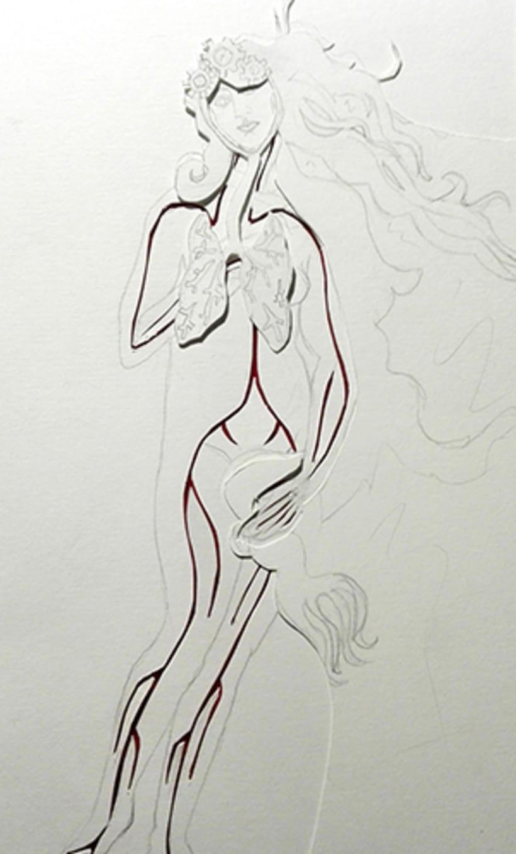 Anatomía de Venus 1