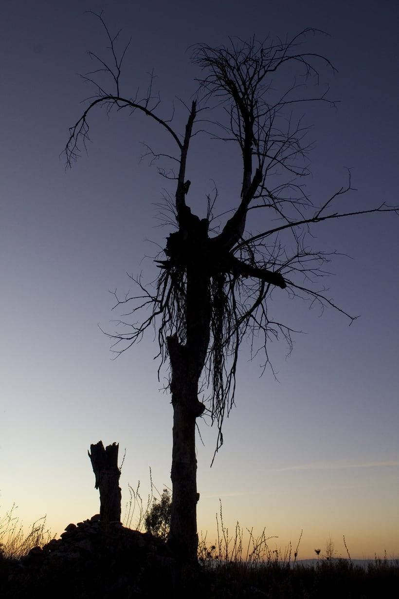Proyecto fotográfico, el paisaje 0