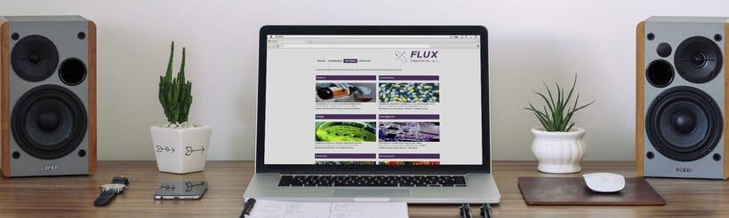 Flux Ingenieros -1