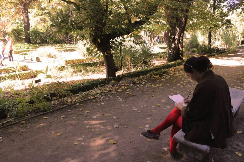 Botanika | Madrid 5