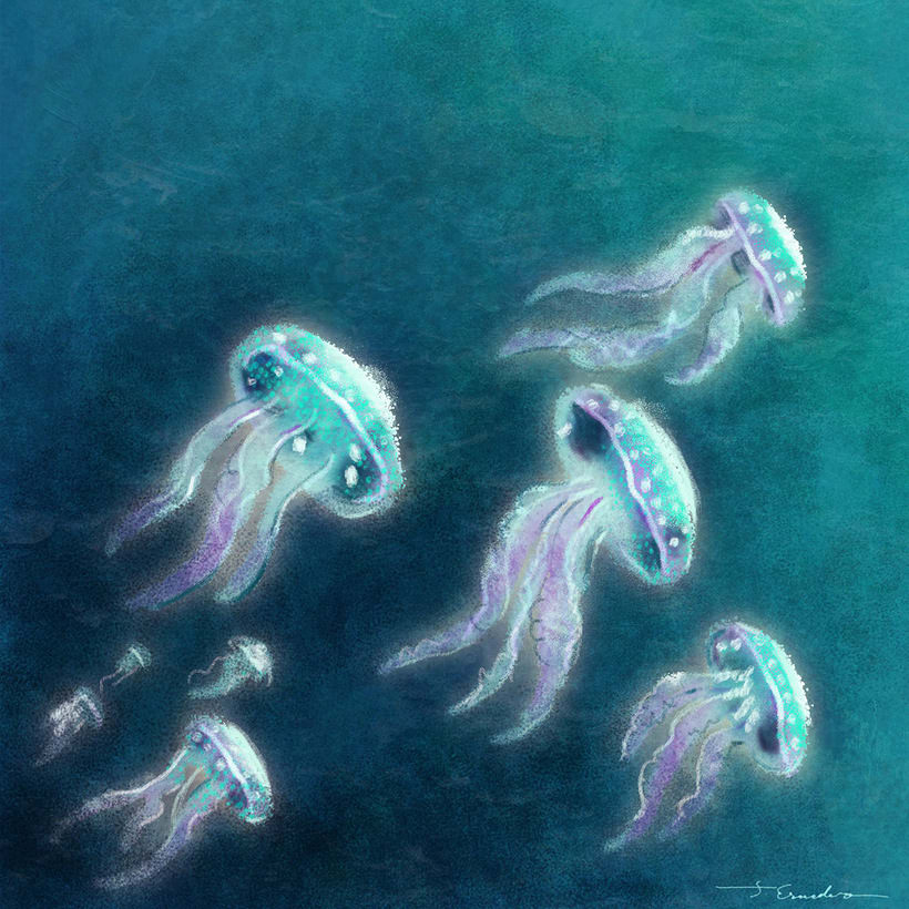 Cousteau. Curiosities by J. Escudero 3