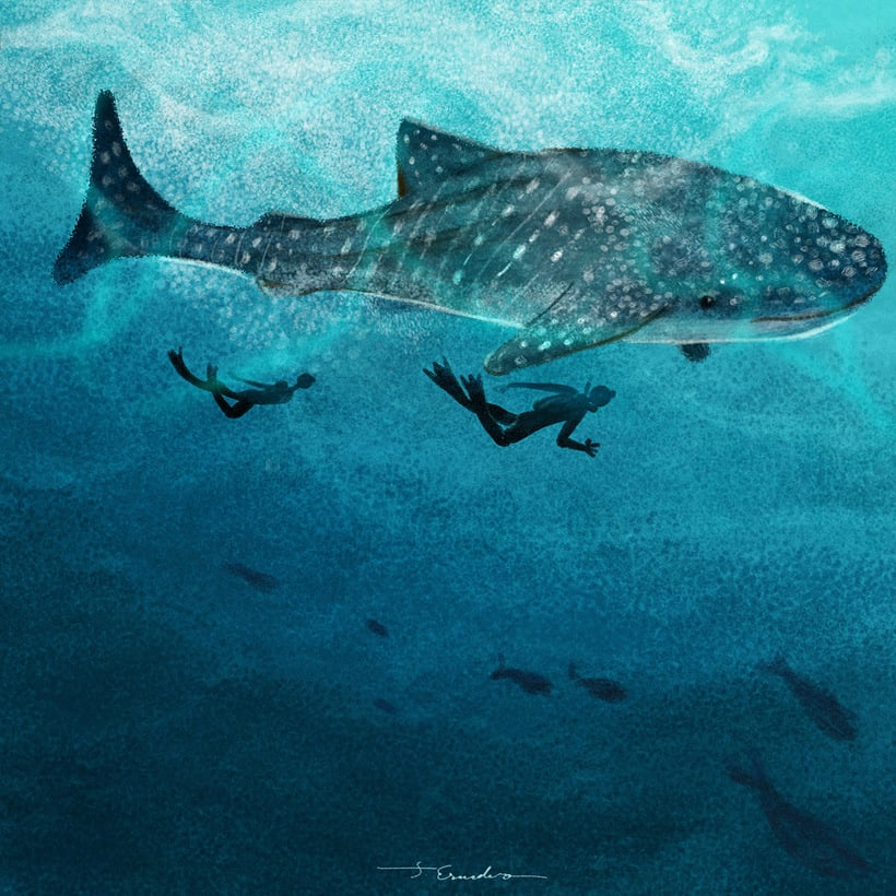 Cousteau. Curiosities by J. Escudero 4