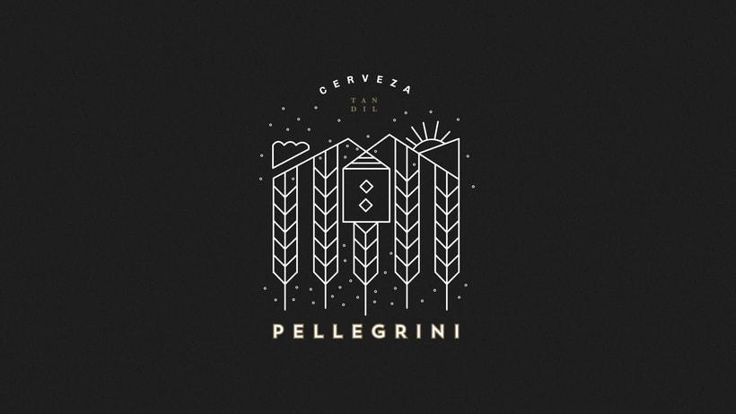 Pellegrini - cerveza artesanal  1