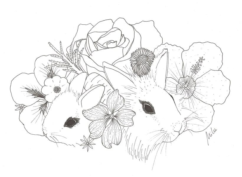 Ilustraciones Milenamelenas 2