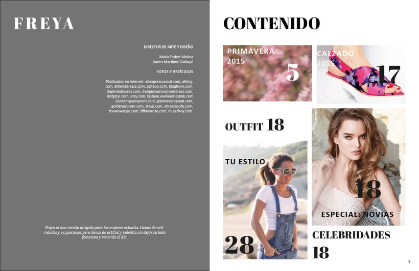Diseño de Revista (sin fines de lucro) 2
