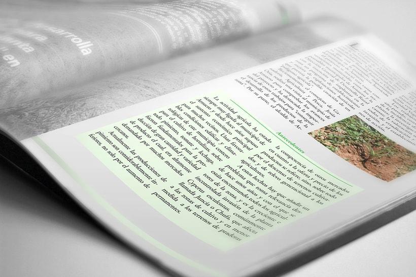 Revista Cantabria Verde 0