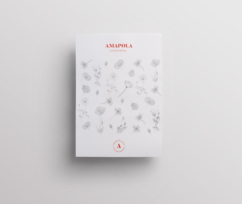 Amapola Floristerías 6