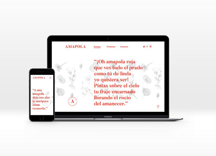 Amapola Floristerías 11