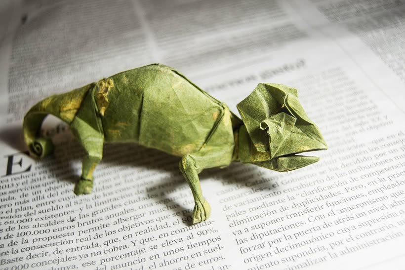 El zoológico de papel de Gonzalo Calvo 17