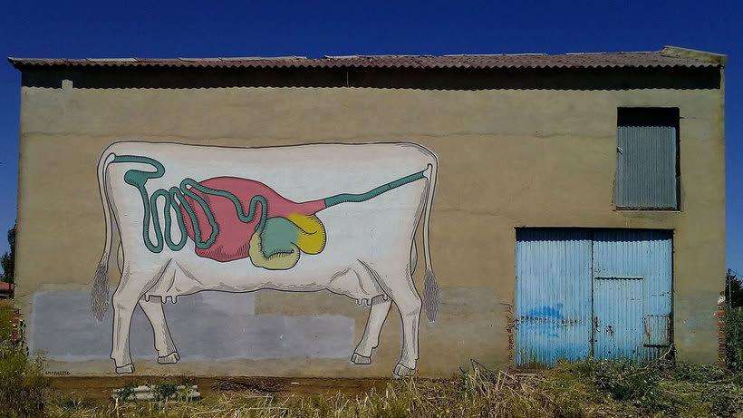 Ampparito: arte urbano rural 5