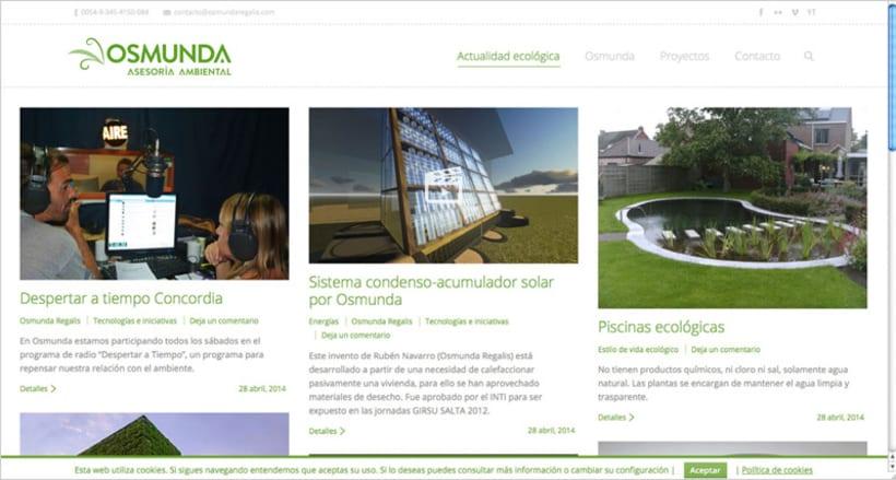 Web Asesoría Ambiental 0