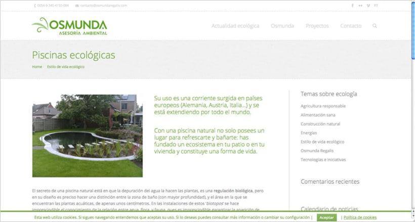 Web Asesoría Ambiental 1