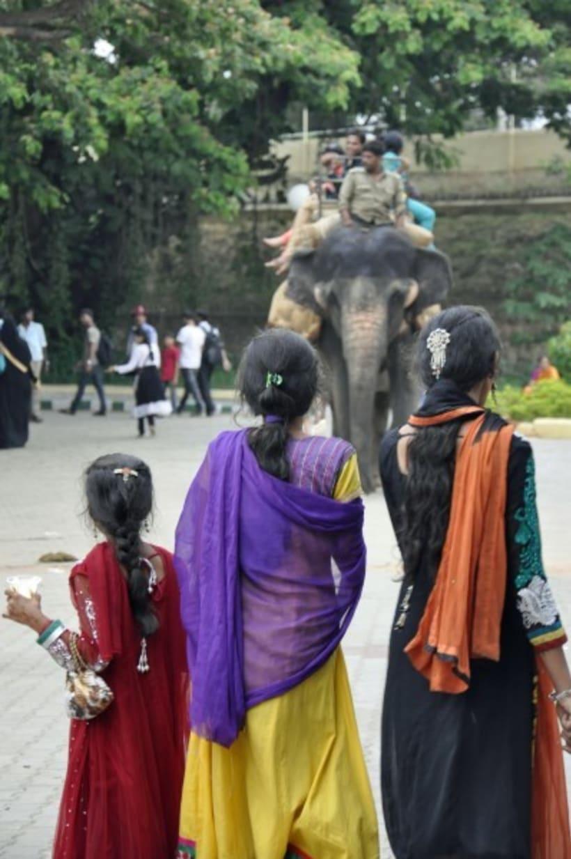 Fotografia: Mi mirada del Sur de la India 4