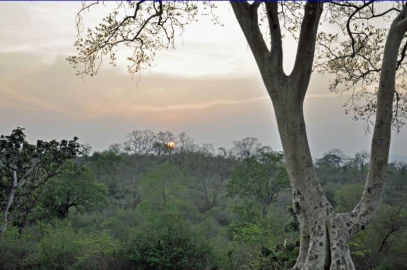 Fotografia: Mi mirada del Sur de la India 10