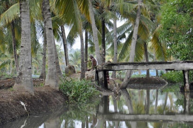 Fotografia: Mi mirada del Sur de la India 26