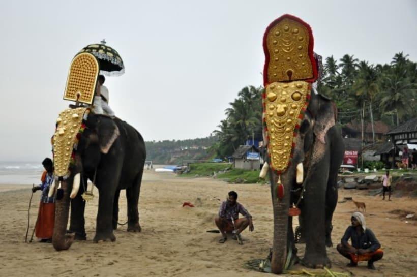 Fotografia: Mi mirada del Sur de la India 29