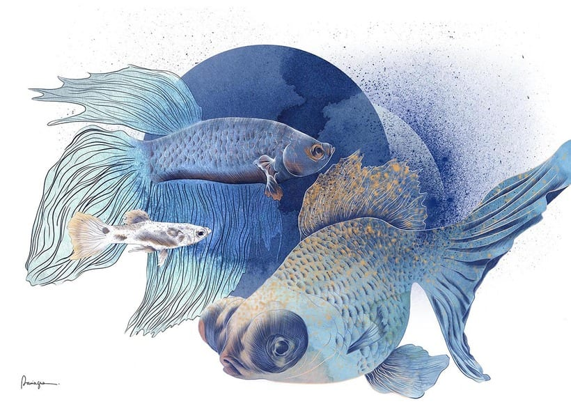 Blue Fish -1