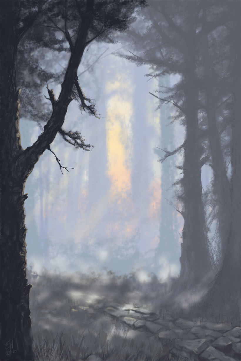 Camino en el bosque 0