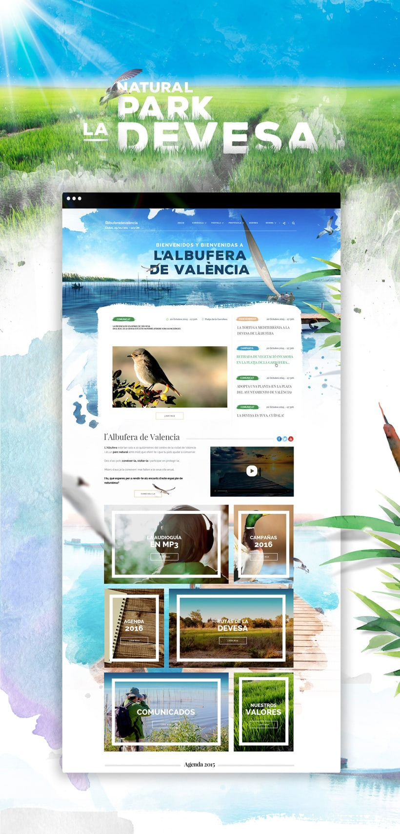 Diseño website - Parque Natural Devesa / Albufera - Ayuntamiento de Valencia 0