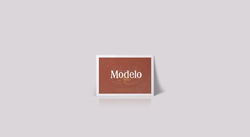 Rebrand Modelo  9