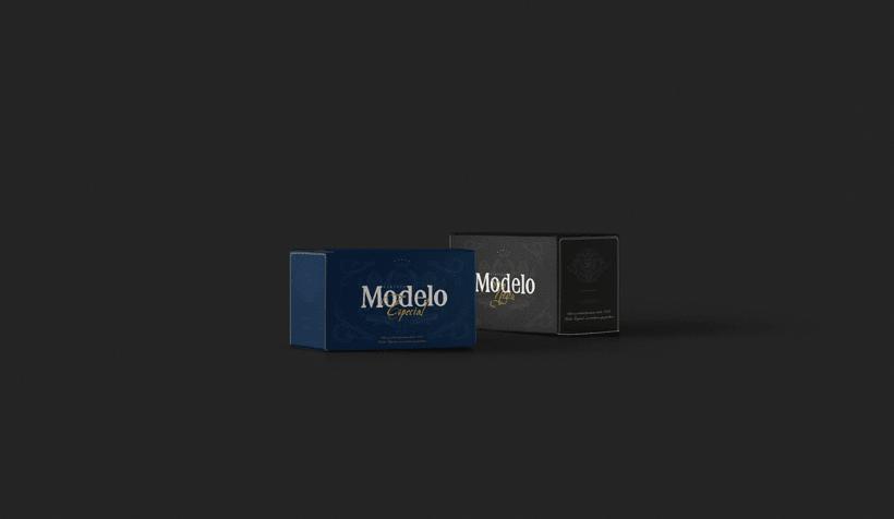 Rebrand Modelo  5