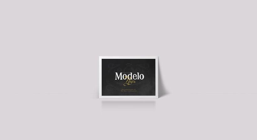 Rebrand Modelo  8