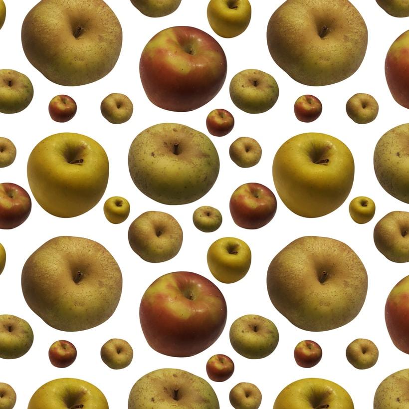 Pattern manzanas -1