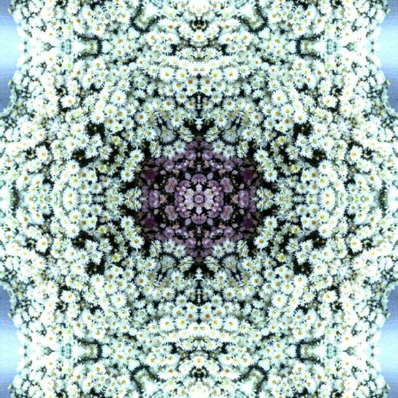 Kaleidoflowers -1