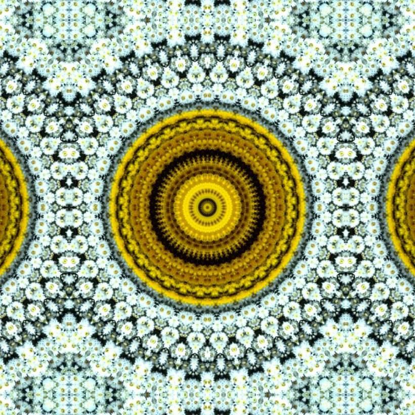 Kaleidoflowers 2