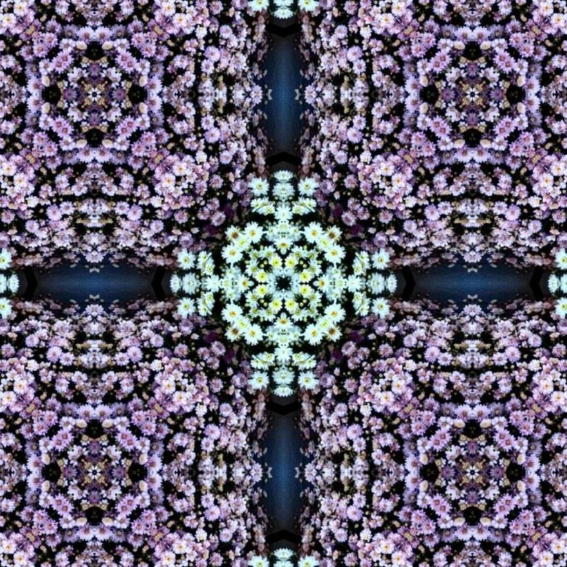 Kaleidoflowers 4
