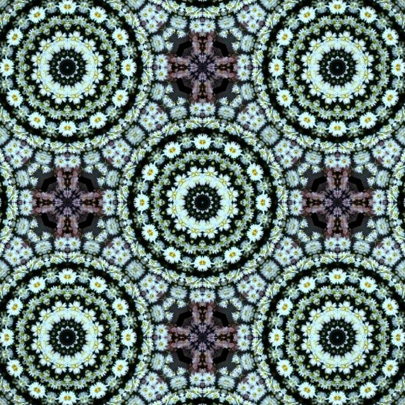 Kaleidoflowers 5