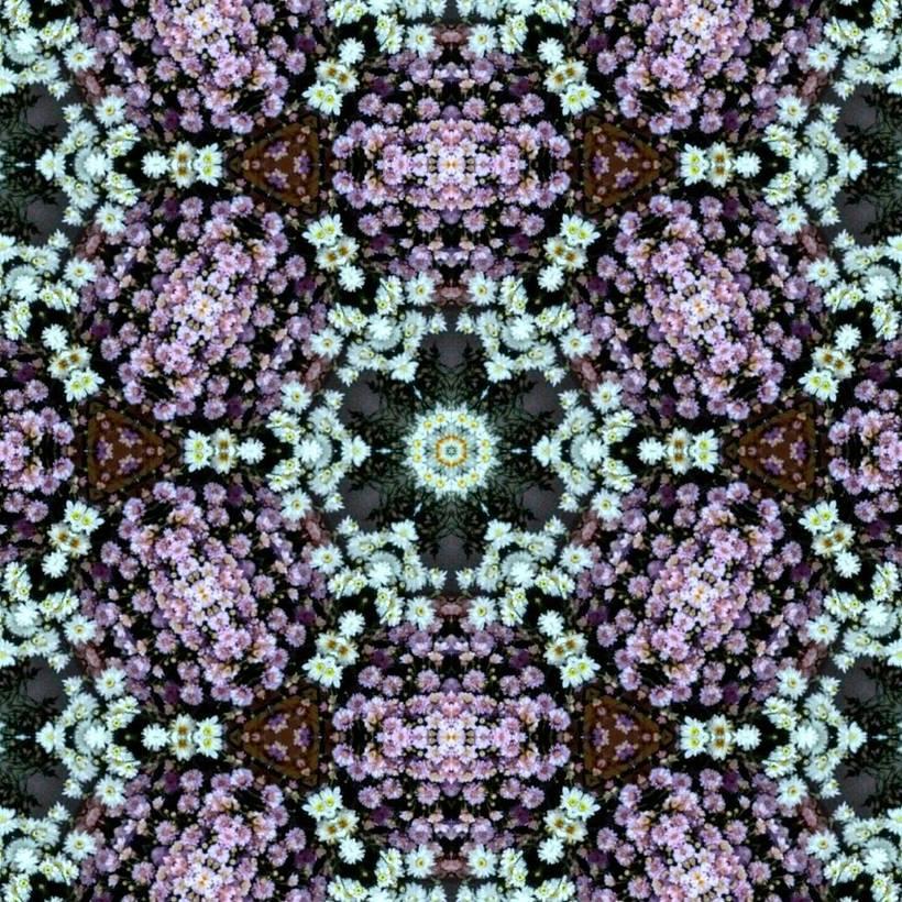 Kaleidoflowers 6